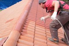 Čištění a nátěry střechy (1)
