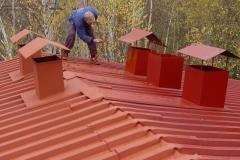 Čištění a nátěry střechy (118)