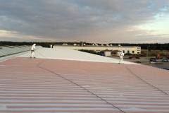 Čištění a nátěry střechy (136)