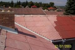 Čištění a nátěry střechy (144)