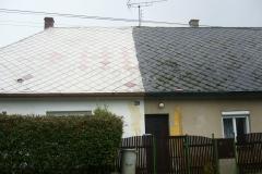 Čištění a nátěry střechy (160)