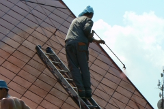 Čištění a nátěry střechy (176)