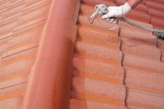 Čištění a nátěry střechy (190)