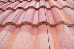 Čištění a nátěry střechy (2)