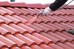 Čištění a nátěry střechy (25)