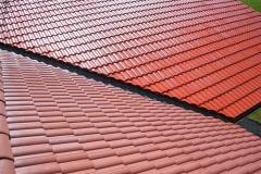 Čištění a nátěry střechy (27)