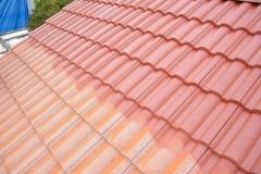 Čištění a nátěry střechy (3)