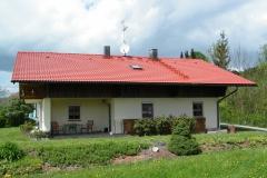 Čištění a nátěry střechy (35)