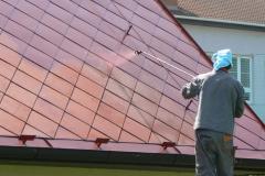 Čištění a nátěry střechy (38)