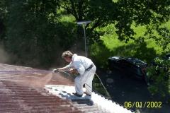 Čištění a nátěry střechy (50)