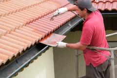 Čištění a nátěry střechy (7)