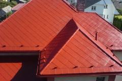Čištění a nátěry střechy (86)