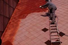 Čištění a nátěry střechy (97)