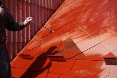 Čištění a nátěry střechy (98)
