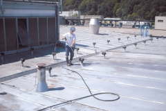 Maintenance of tin roof