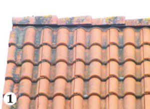Jen několik let stará tašková střecha pokrytá špínou, mechy a lyšejníky